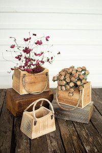 Set of 3 Rustic Wooden Purse Planters