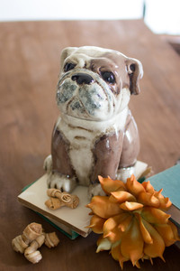 ceramic bull dog canister