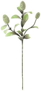 botanica #2065