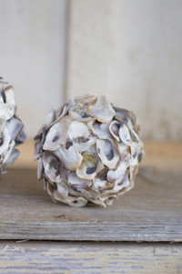 small oyster shell sphere